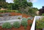 Landscape Contractors Marin Christian Nissen Landscaping